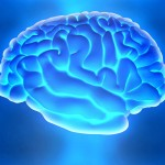 A bright blue brain to represent the effects alcohol can have on our brains.